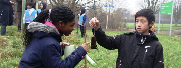 The Woodland Trust provide trees with Slough Council and local Schools to build a copse